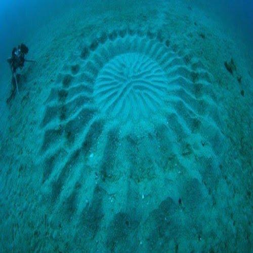 Underwater crop circle